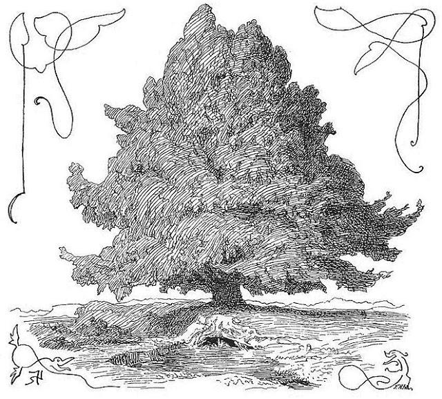 la symbolique de l arbre dans le tatouage tatouage paris. Black Bedroom Furniture Sets. Home Design Ideas